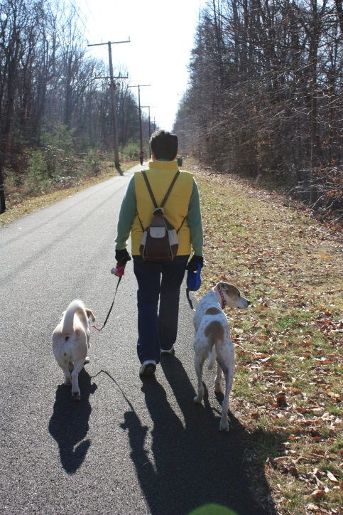 Walking With My Canine Companions