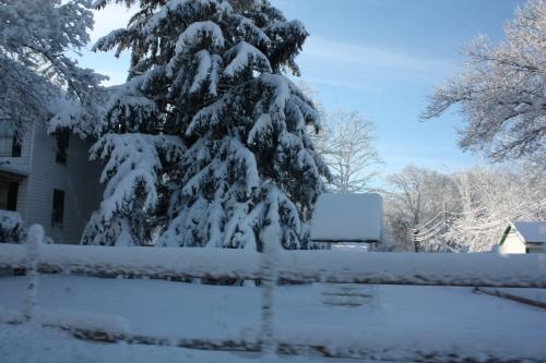 snowstormfeb1