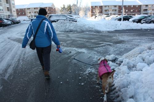 snowstormfeb6